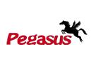 Pegasus Deckenlifte